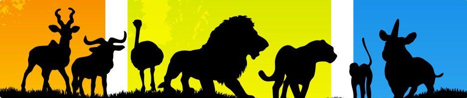 safari resa