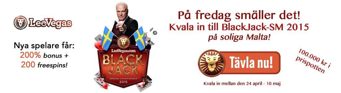 BlackJack SM 2015